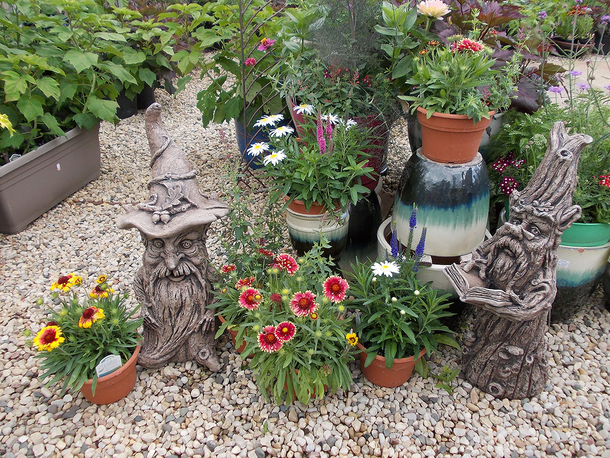 Pereninial Butterfly Combo Pots